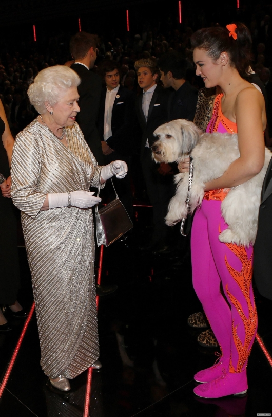 one direction,1d,royal variety show 2012,harry styles,liam payne,louis tomlinson,niall horan,zayn malik,1d meeting the queen